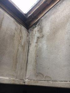 Schimmelbefall unter einem Dachfenster in der Wohnung